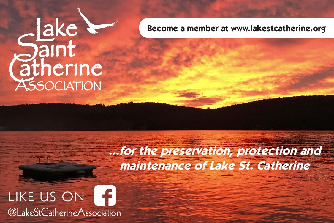 Join the Lake St. Catherine Association